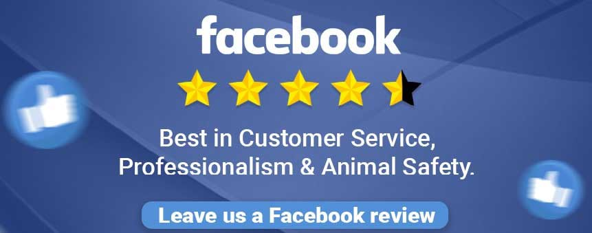 Image for Client Testimonials