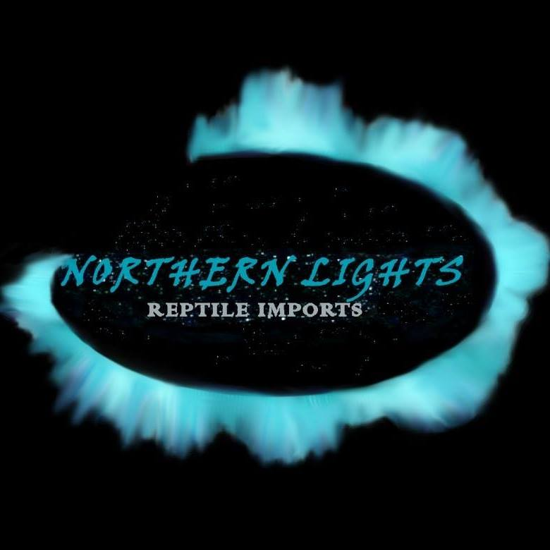 Northern Lights Reptile Imports - We move reptiles and amphi
