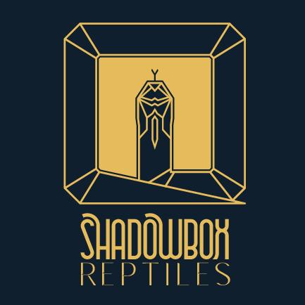 ShadowBox Reptiles
