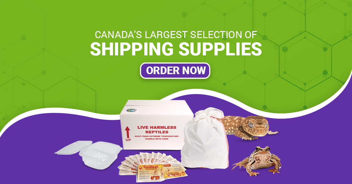 High Quality Shipping Supplies